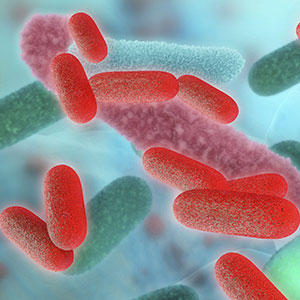 Need a legionella risk assessment?